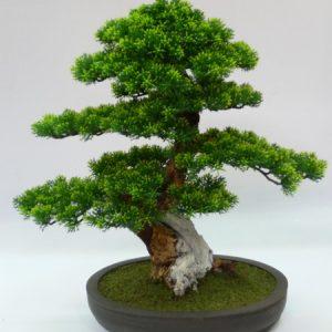 JM-Bonsai.S1 (H47 cm)